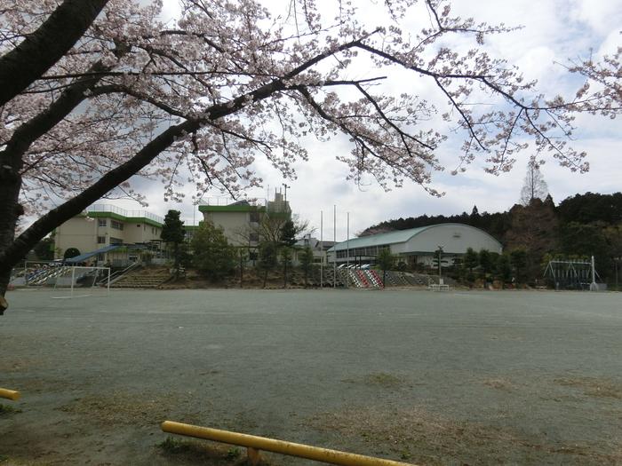 トップ|新山小学校